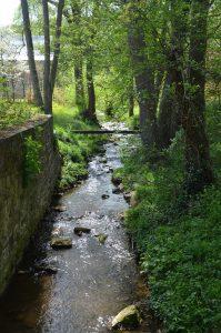 Le ruisseau l'Andenelle